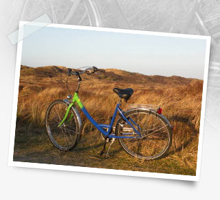 fahrrad-angebote-bild